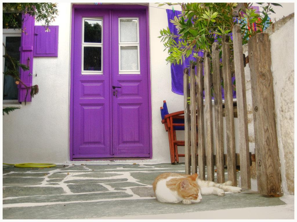 Chọn màu sắc cánh cửa theo ngũ hành bản mệnh của gia chủ